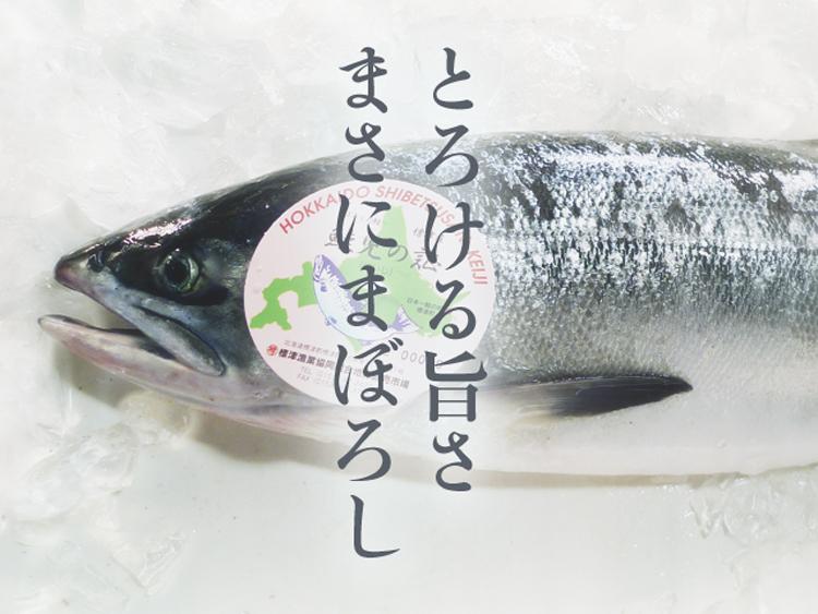 keiji_top
