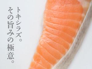 tokishirazu_top