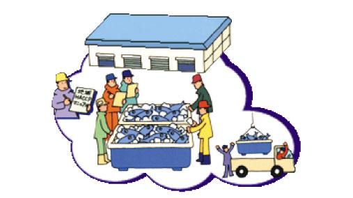標津町地域HACCP対応市場
